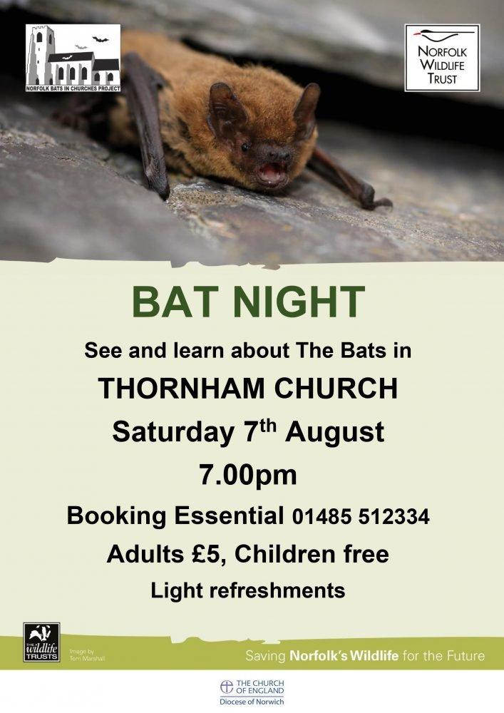 Thornham Bat Night 280821 poster
