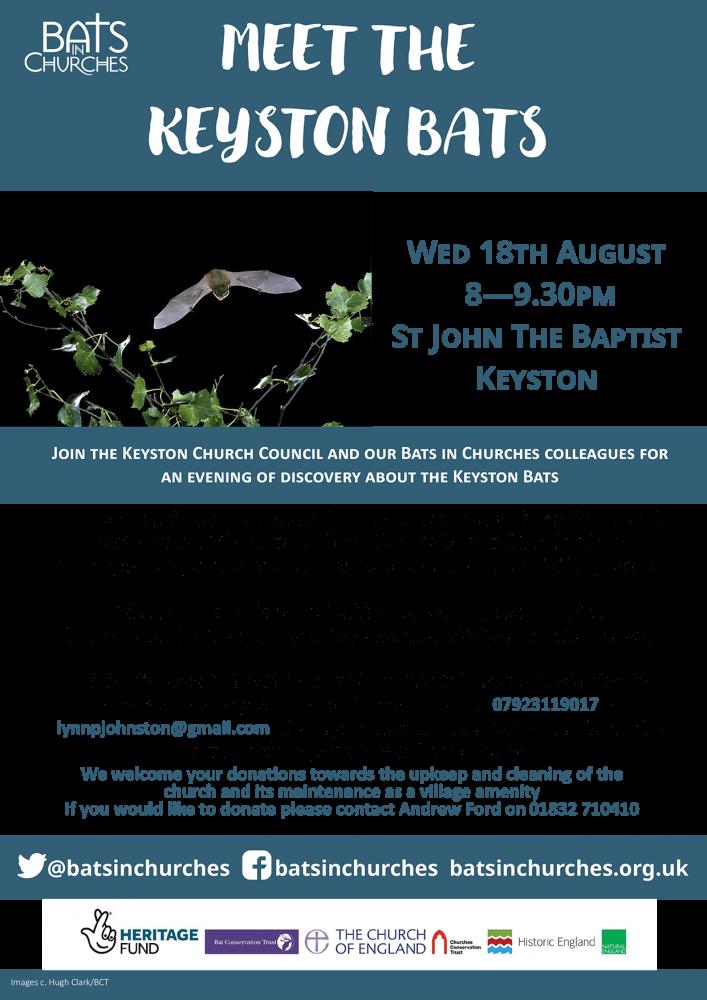 Keyston Bat Night Poster